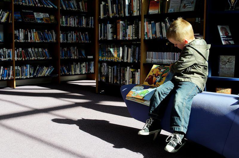Niño sentado sobre un banco en biblioteca, hojeando un libro de dibujos.