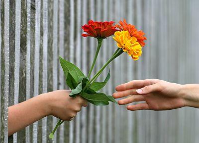 Una mano entrega flores, otra mano las recibe.