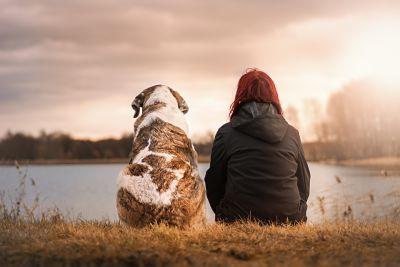 La imagen muestra a una chica con su mascota, un perro, sentados frente a un lago: Psicología y mascotas en Bilbao